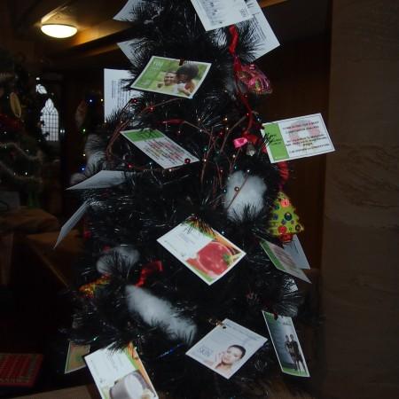 Herbalife Christmas Tree Festival 2014